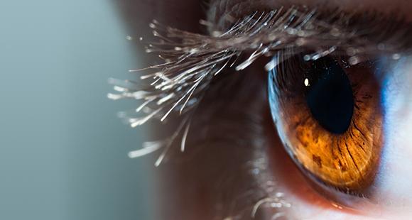 Notions fondamentales du syndrome de l'œil sec (en anglais seulement)